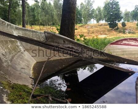 Vecchio marcio legno shore lago molti Foto d'archivio © pzaxe