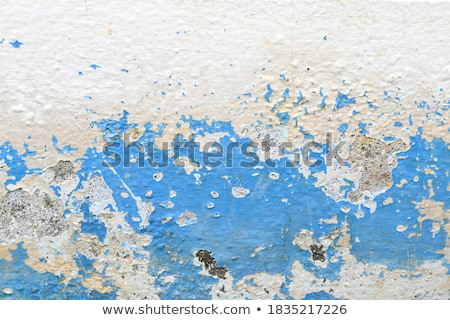 Dirty old cracked wall coating. Stock photo © latent