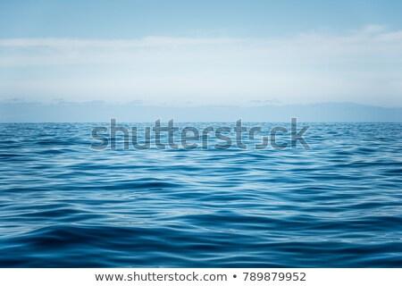 blue sea at tenerife Stock photo © compuinfoto