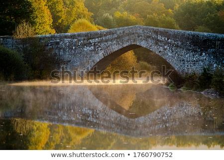 Pedra ponte reflexão rio salgueiro água Foto stock © samsem