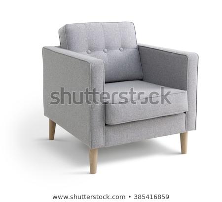 Metal · sandalye · beyaz · görmek · bahçe · çiçek - stok fotoğraf © ozaiachin