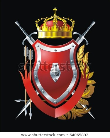 shield and two swords vector illustration stock photo © konturvid
