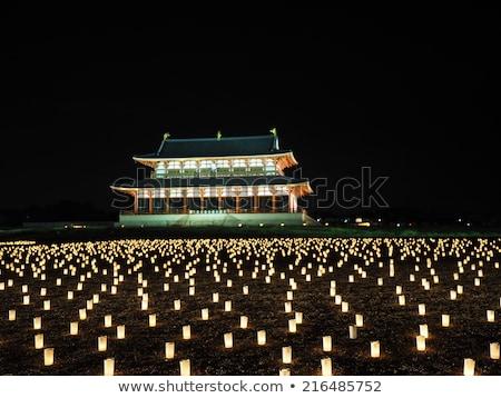 heijo palace in nara japan stock photo © vichie81