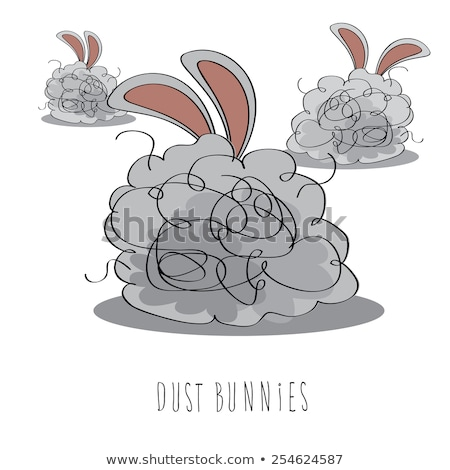 dust bunnies stock photo © stocksnapper