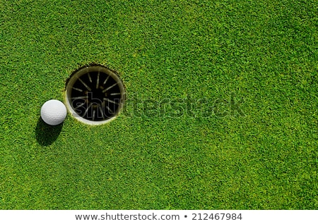 Golf ball in the hole. Stock photo © beholdereye