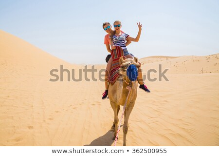 Twee kamelen strand familie glimlach zee Stockfoto © Kayco