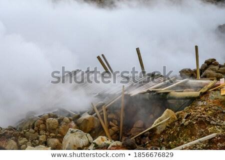 Tájkép vulkáni láva mező terep körül Stock fotó © suerob