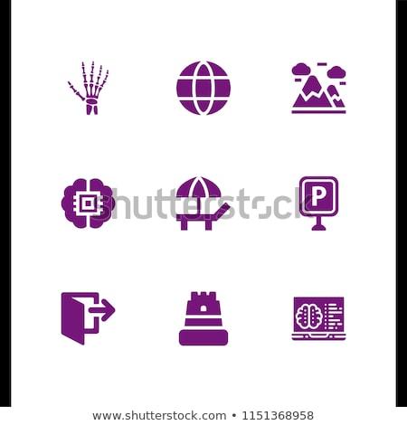 SEO Internet Sign Green Vector Button Icon Design Set 9 Stock photo © rizwanali3d