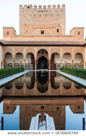 Water reflection of Alhambra Stock photo © rmbarricarte
