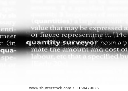 Dictionary definition surveyor Stock photo © chris2766