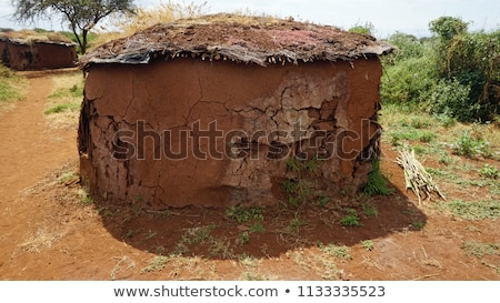 siluet · Afrika · manzara · örnek · seyahat · siyah - stok fotoğraf © adrenalina