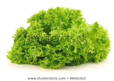 Lettuce Lollo Bionda Stock photo © Digifoodstock