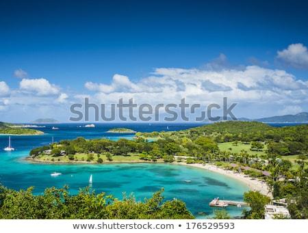 ストックフォト: パノラマ · カリビアン · 島 · バージン諸島 · 森林 · 太陽