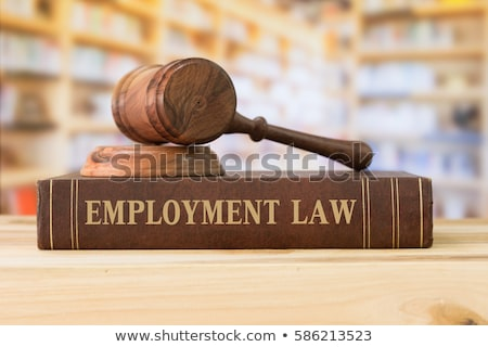 A law book with a gavel - Employment Law Stock photo © Zerbor