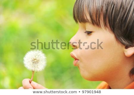 piccolo · ragazzo · spalle · cielo · sorriso · amore - foto d'archivio © freeprod