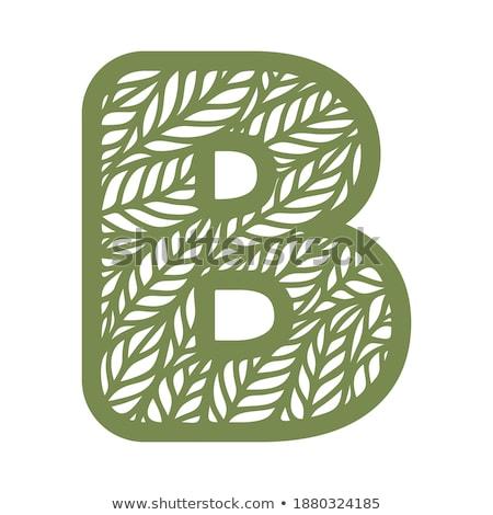 green leaf flat icon vector illustration isolated on white background stock photo © kyryloff