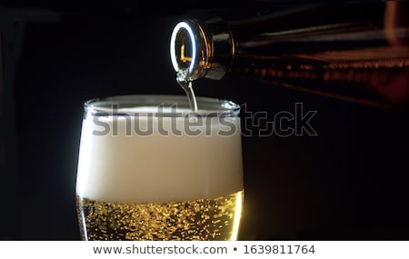 Beer in glass and bottle Stock photo © Givaga