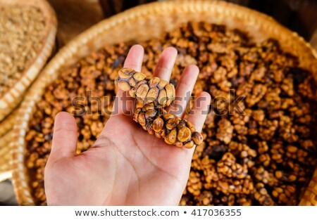 Raw Kopi Luwak coffee beans on coffee farm Stock photo © boggy
