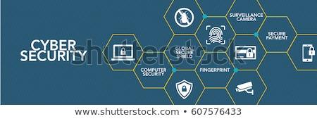 Veiligheid veiligheid criminaliteit iconen sleutel Stockfoto © soleilc