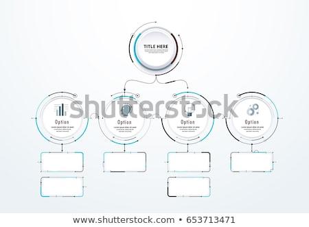 Kör diagram infografika sablon lehetőségek prezentációk Stock fotó © kyryloff