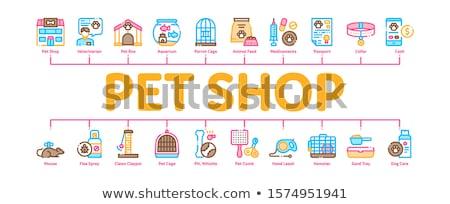 Pet Shop Minimal Infographic Banner Vector Stock photo © pikepicture