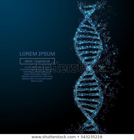 DNA molecule - line design style vector elements Stock photo © Decorwithme