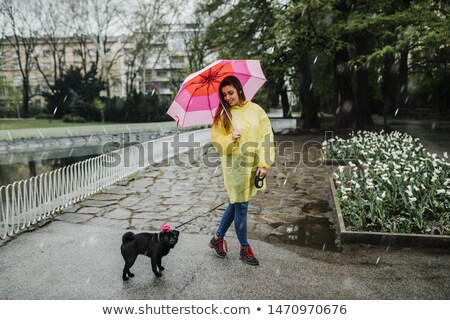 Woman Walk with Dog in Park, Rainy Autumn Weather Stock photo © robuart