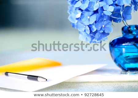 kék · közelkép · levelek · növény · virágcsokor - stock fotó © jarenwicklund