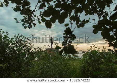Paisagem ver descrição amarelo blue sky Foto stock © REDPIXEL