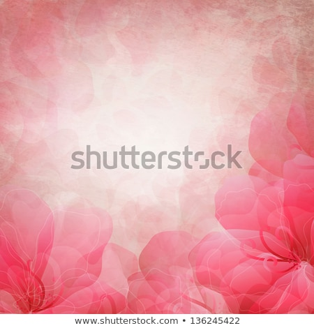 Beautiful pink floral background with birds stock photo © Elmiko