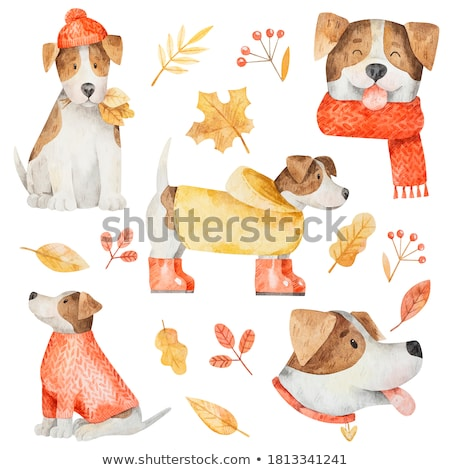 Сток-фото: Funny Cartoon Dog Set