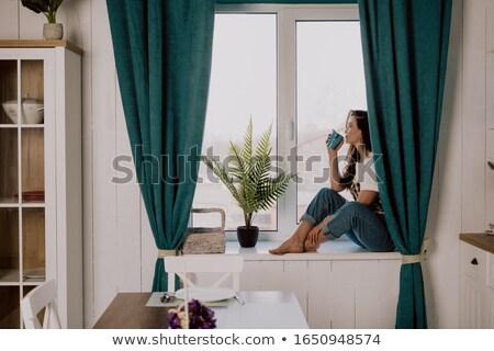 mulher · de · negócios · bebidas · café · cozinha · negócio · mulher - foto stock © bigjohn36