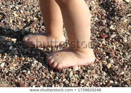 Stone foot on the stony beach Stock photo © dinozzaver