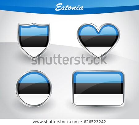 Liefde Estland symbool hart vlag icon Stockfoto © tkacchuk