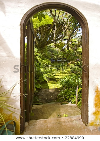 deuropening · rustig · tuin · opening · steen · trap - stockfoto © kimmit