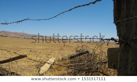 wooden fence post Stock photo © PixelsAway