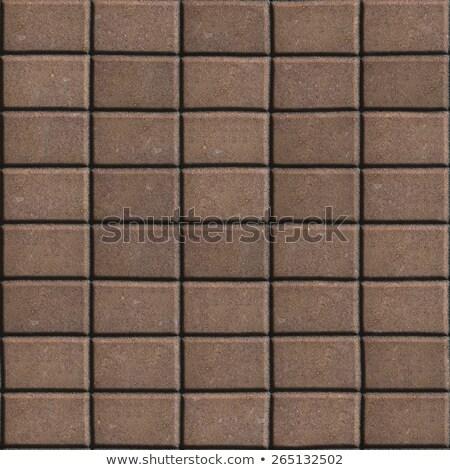 Brown Paving Slabs - Rectangles of the Single Size. Stock photo © tashatuvango