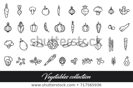 health line icons on green background stock photo © punsayaporn