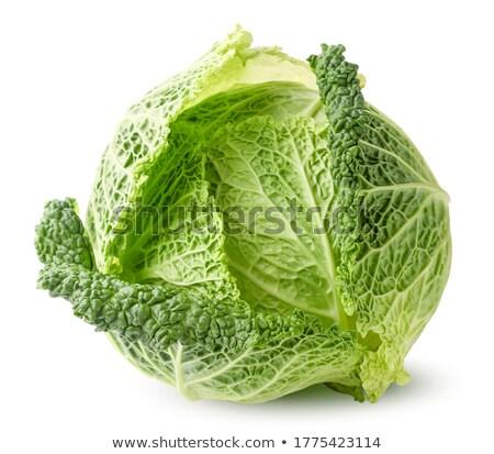 Savoy Cabbage isolated Stock photo © Klinker