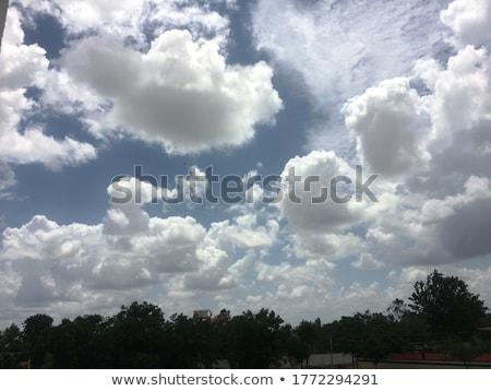cloudy weather   Stock photo © avq