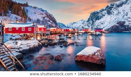 mesés · tél · tájkép · gyönyörű · hegyek · hajnal - stock fotó © Kotenko