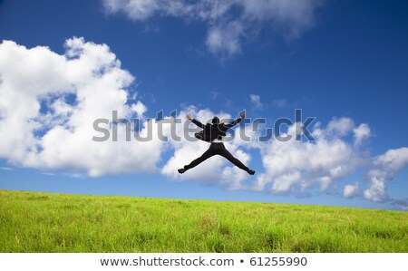 Businessman jumping on grass stock photo © Paha_L