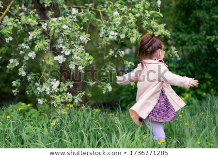 Kid Girl Back View Petals Stock photo © lenm