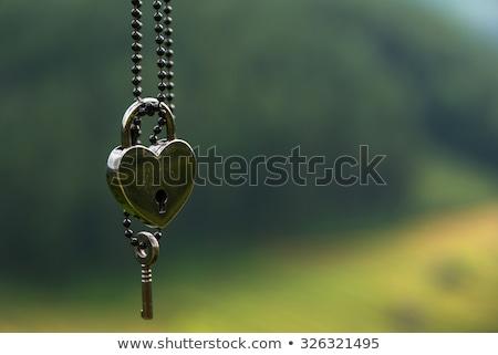 Antique keys on green background Stock photo © blackmoon979