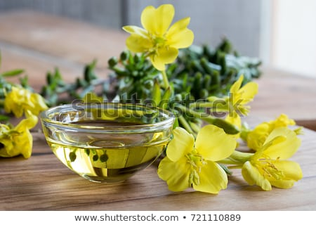 Evening primrose oil with fresh evening primrose flowers and seeds Stock photo © madeleine_steinbach