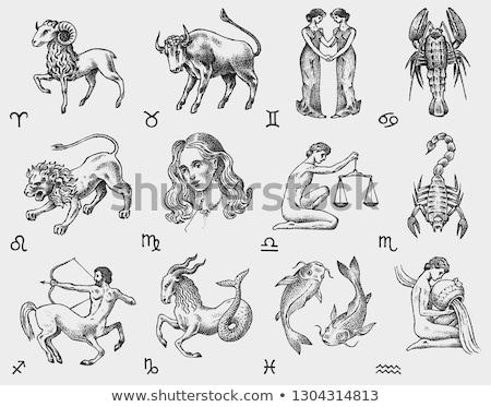 Stock fotó: Vector Outline Cute Zodiac Circle Horoscope