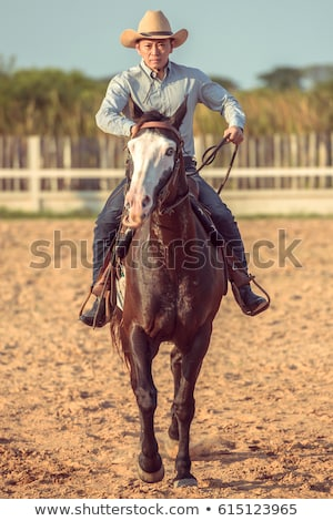 animal Cow boy_Action Stock photo © toyotoyo
