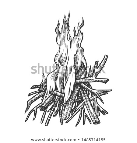 Traditional Burning Timbered Stick Vintage Vector Stock photo © pikepicture