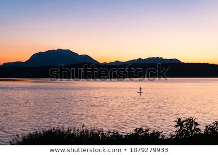 Kilátás hegy Ausztria alpesi út fű Stock fotó © borisb17