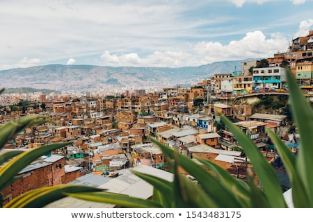 Houses on the hills of Comuna 13 in Medellin, Columbia Stock photo © boggy